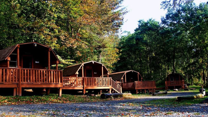 log-cabins-1024x576