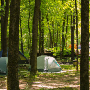 Camping tents set up among the trees Indian Head Canoeing Rafting Kayaking Tubing Delaware River