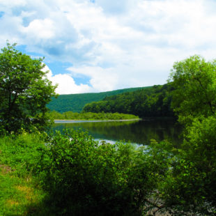 Peaceful scene with green trees on Delaware River Indian Head Canoeing Rafting Kayaking Tubing Delaware River